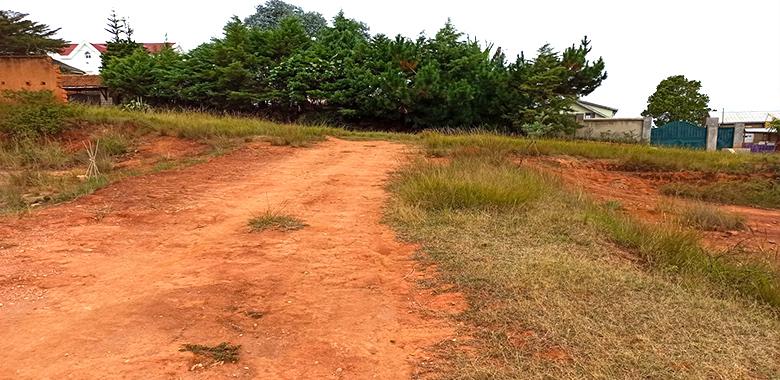 Terrain plat 6000m², Ambohimanga, T070520