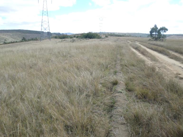 TERRAIN 385 ha, ROUTE DE TAMATAVE PK 30, T 160721